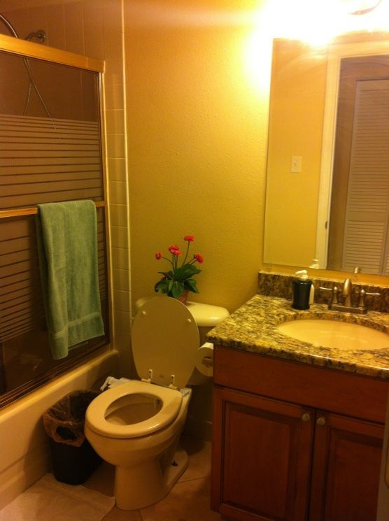 Renovated bathroom #2