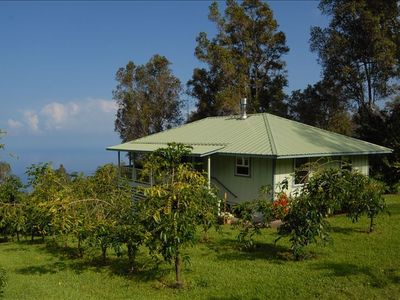 Coffee Trees Surround the Rental with a Beautiful Ocean View Off the Lanai