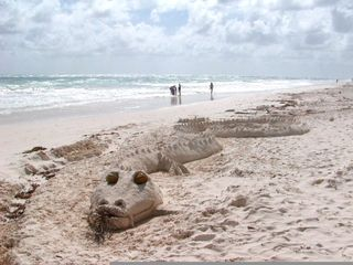 Tulum house photo - Dragon Sand Sculpture