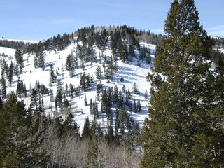 Deer Valley condo photo - Beautiful Deer Valley Mountain!