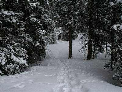 Go snowshoeing right out the back door!