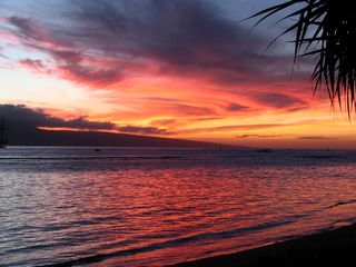 Lahaina condo photo - another great sunset from the lawn