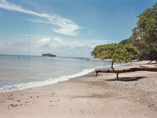 Montezuma bungalow photo - The Beach and Island in front of the house.