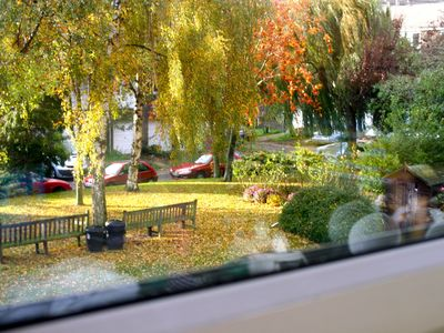 Private square location, view from the kitchen window in Autumn.