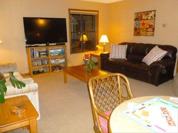 Huge den with sleeper sofa. New flat screen 50 inch tv. PS2 w/ games/dvd