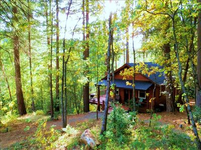 Creekside Cabin in the Woods