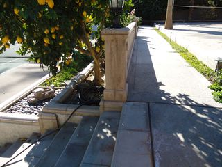 Indian Wells estate photo - stairs to tennis and lots of citrus