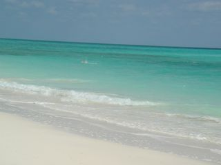 Grand Bahama Island cottage photo - Our Sandy Beach and Aqua Ocean at Diamonds by the Sea