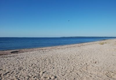 East Hampton house rental - Steps from this private bay beach!
