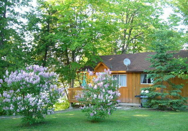 Evergreen Cottage Utterson Ontario Canada Est