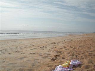 Flagler Beach condo photo - warm and sandy beaches