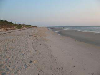 Cape May house photo - Private secluded beaches for long walks and playing in the sand.