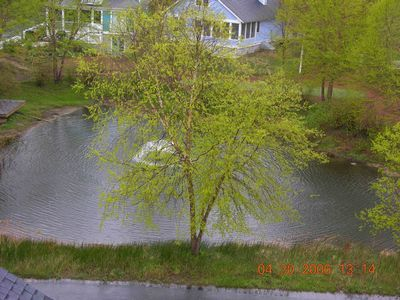 Pond and putting green directly behind house.