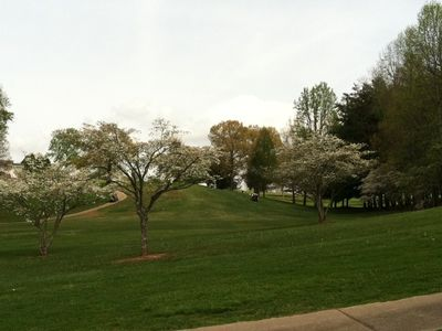 Hayesville cabin rental - Spring at the local golf course and the dogwoods are in bloom