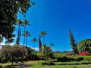 Kaanapali cottage photo - The mature resort grounds are meticulously maintained.