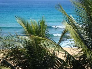 Arecibo villa photo - Surfing...we provide the surf boards and body boards!!!
