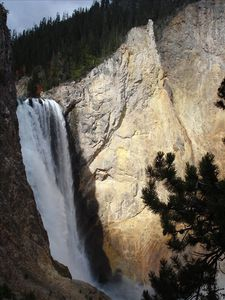 Jackson Hole cabin rental - Lower Falls in Yellowstone