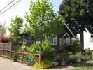 Country garden in full summer bloom - Eugene house vacation rental photo