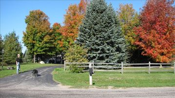 Street view of property with Fall colors