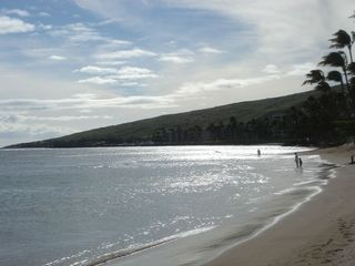 Maalaea condo photo - Sugar beach 7 minute walk from condo.