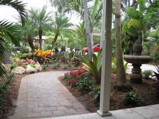 Fort Lauderdale house photo - Tropical Tropical Tropical landscaping. From the Front Door.