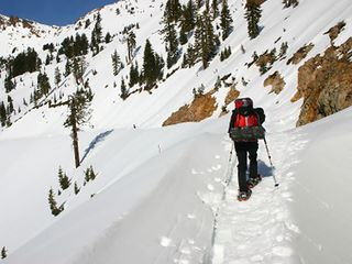 Mazama cabin photo - Snowshoeing