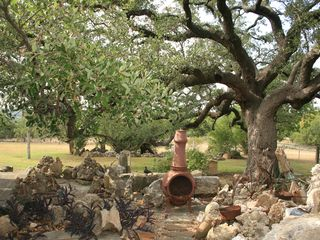 Austin house photo - ROCK GARDEN UNDER 500 YR. OLD OAK