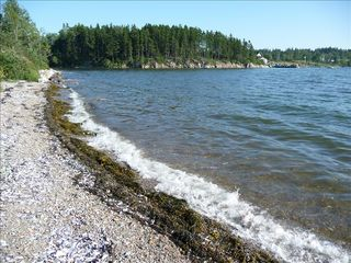 West Tremont cottage photo - Explore Our Private Beach or Rocky Shoreline