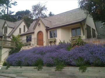Carmel cottage rental - Front view of Nonesuch Cottage