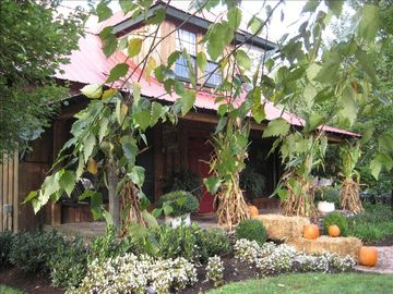 Franklin cottage rental - Fall is an amazing time at Moonshine Hill, and we go overboard with decorations!