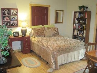 Ellijay cabin photo - Queen Size Bed In Basement With Plenty of Books