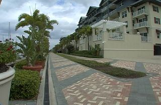 Tampa townhome photo - View of street and resort