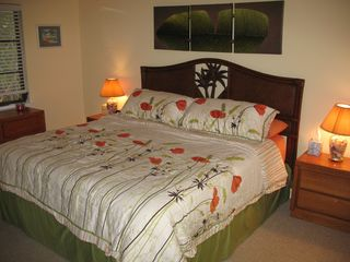 Don Pedro Island condo photo - Master BR with king bed, Cable, and 32' Plasma.