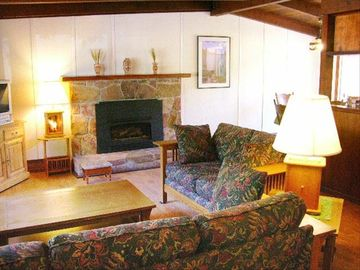 Manzanita Living room with gas fireplace. The Blackberry has a wood fireplace.