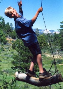 40 ft. high swing makes a great ride over the meadow with easy on and off!