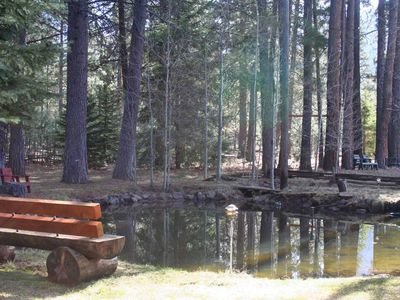 Pond and Log Bench on Property