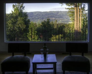 Large window brings West Side of Sonoma Valley into the Living Room