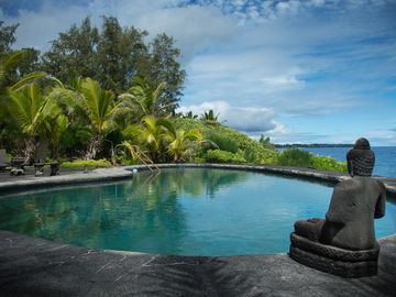 Hilo estate rental - Incredible Nature.. Just you, the ocean and the sky