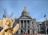 VRBO Bear in the Mile High City!