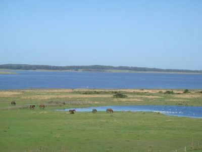 View of Laguna Jose Ignacio