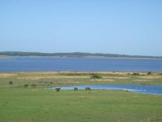 Maldonado house photo - View of Laguna Jose Ignacio