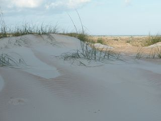 The Sand Dunes of Crescent Beach - Crescent Beach condo vacation rental photo