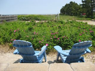 Wells townhome photo - View from patio of sea roses out to the beach
