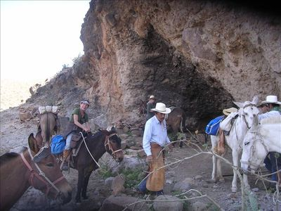Loreto house rental - Take a mule trip to see cave paintings with our friend Trudi