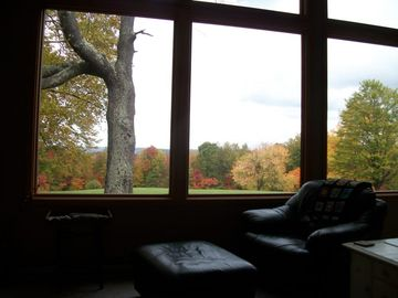 View of Fall from the Living Room