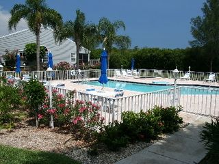 Bradenton condo photo - Heated pool & hot tub overlooks water