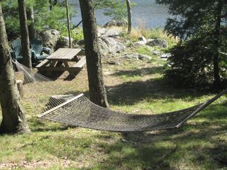 Ridgefield house photo - Relax in the hammock. Enjoy a picnic overlooking the lake.