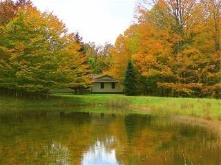 Canaan Valley cabin photo - Touchstone's Pond Attracts Abundant Wildlife