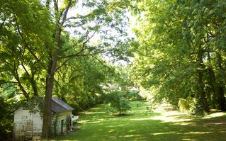 Nashville cottage photo - Enjoy this park like view from your room and porch. The barn was built in 1915.