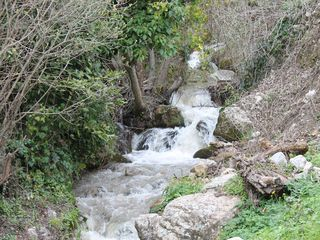 Polizzi Generosa villa photo - The stream in the property